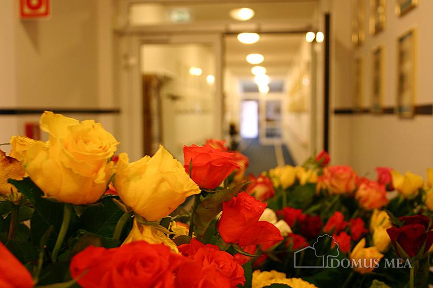 Am Valentinstag Mit Dem Blumenwagen Durch Das Seniorenzentrum Bayerisch  Gmain