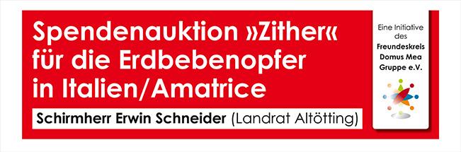 Spendenauktion Zither
